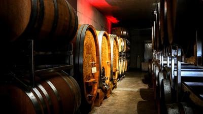 Weinfässer reihen sich in einem Keller aneinander.