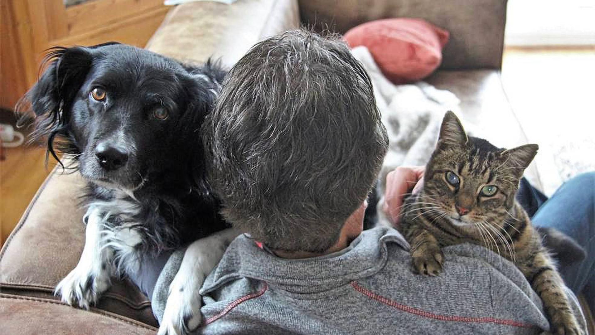 Kuscheln mit Hund und Katz' ist auch in Corona-Zeiten erlaubt. Tiere können sogar helfen, die schwere Zeit besser zu überstehen.