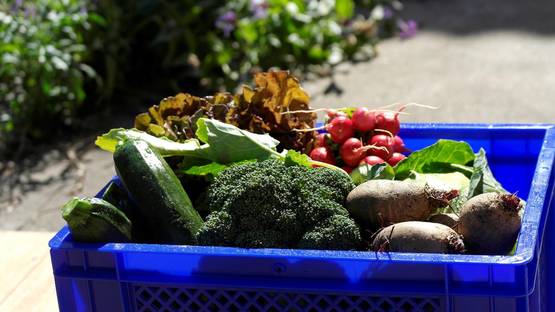 Gemüsekiste gefüllt
