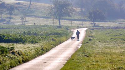 Ob desolater Postweg (unser Foto) oder entlang der Bahnlinie - die Gondelsheimer Grünen fühlen sich von Bürgermeister Markus Rupp zum geplanten Radweg schlecht informiert.