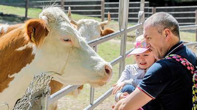 Na, wer bist du denn? Im Brettener Tierpark gehen tierische Bewohner und Besucher auf Tuchfühlung.