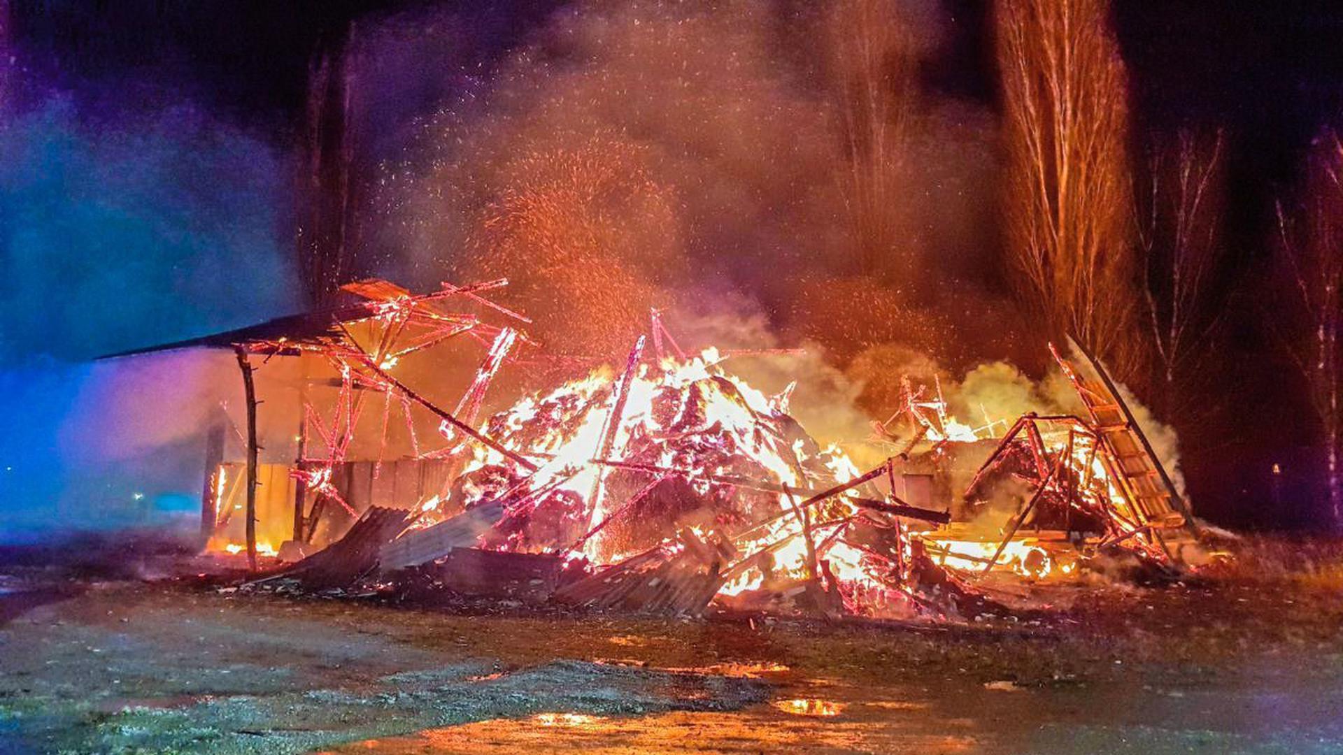Ein größeres landwirtschaftliches Anwesen wurde am späten Mittwochabend im Bereich der Philippsburger Rheinschanzinsel ein Raub der Flammen.