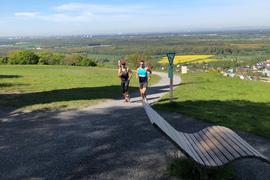 Zwei Läufer auf dem Michaelsberg