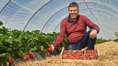 Erdbeerhof Böser