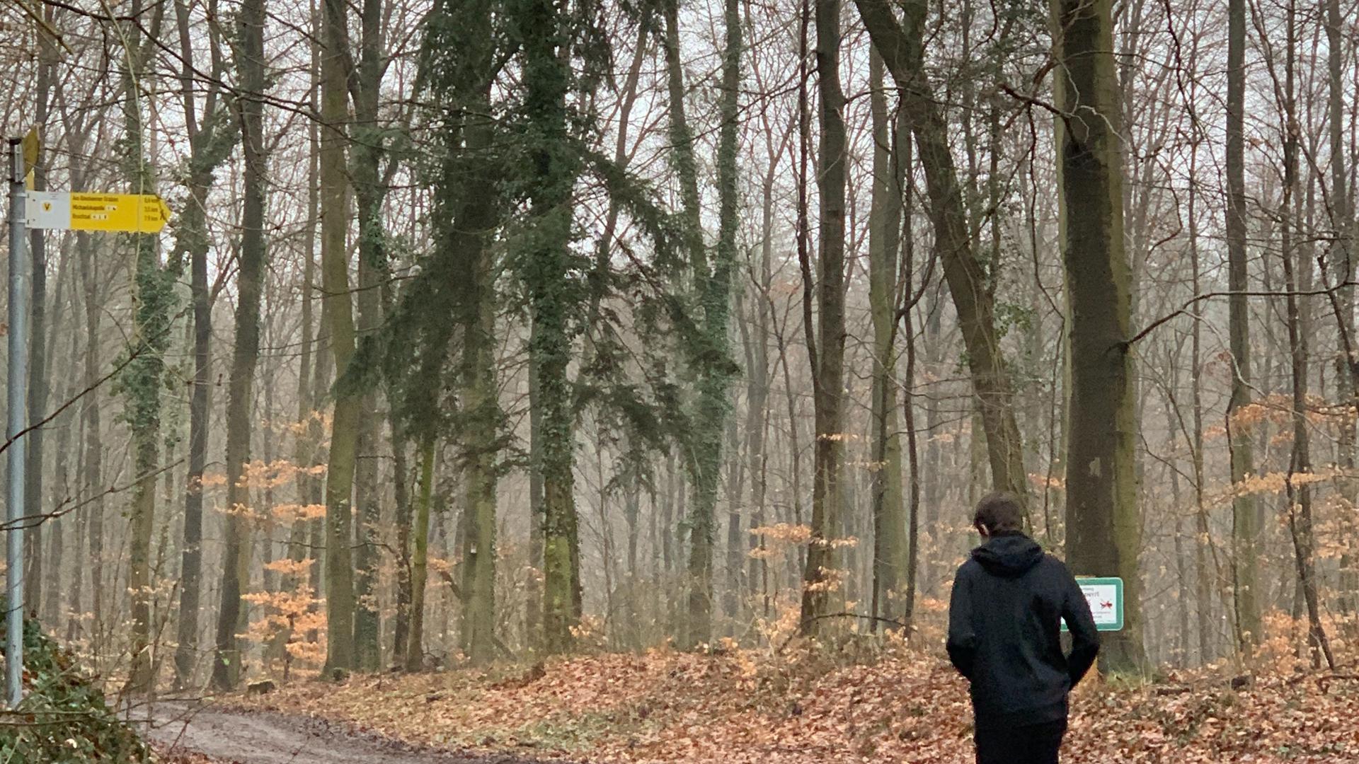 joggender Mann im Wald