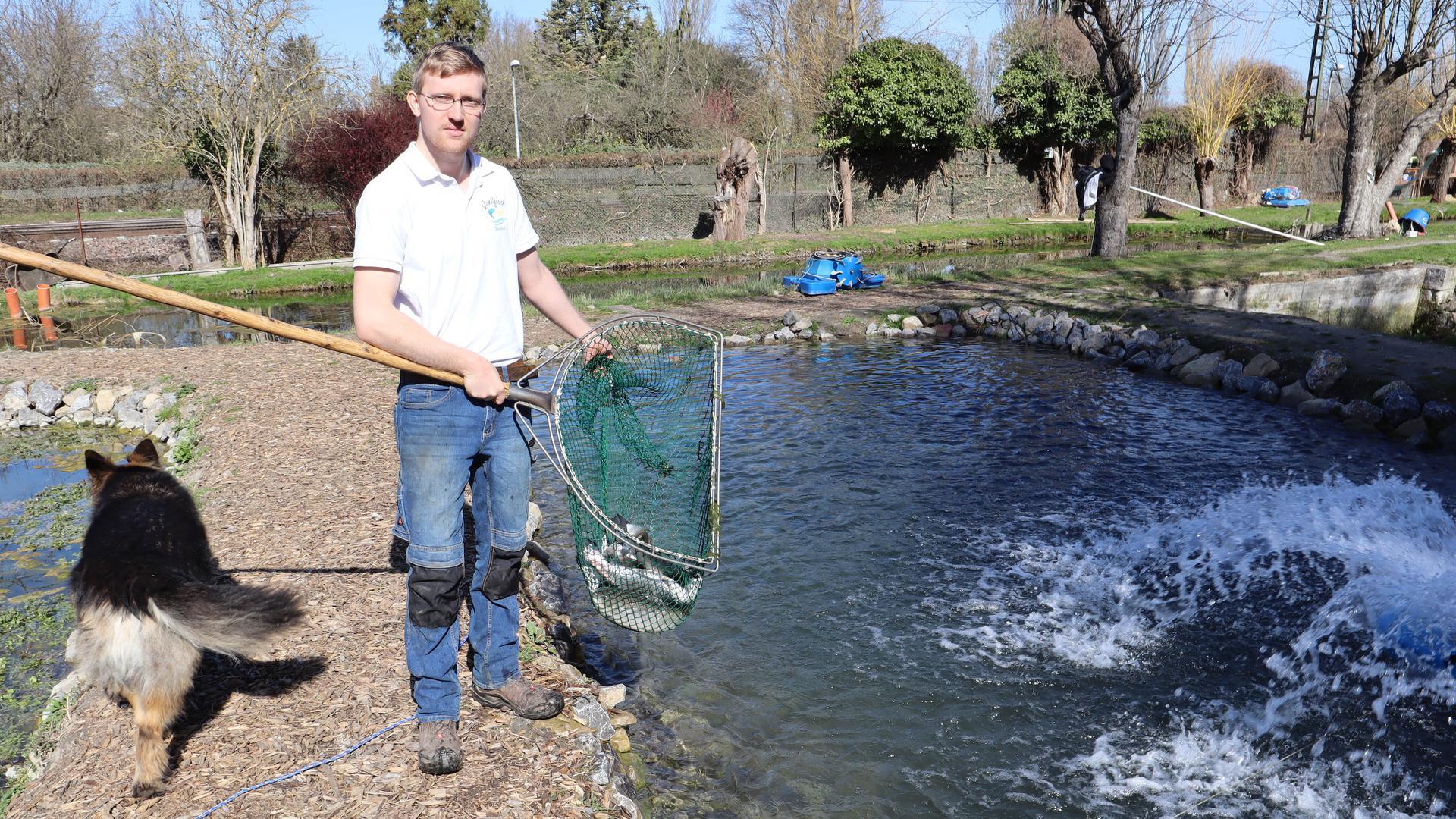 Dominik Wozasek, den Eigentümer und Betreiber von Quellfisch in Bruchsal und Hund Odin