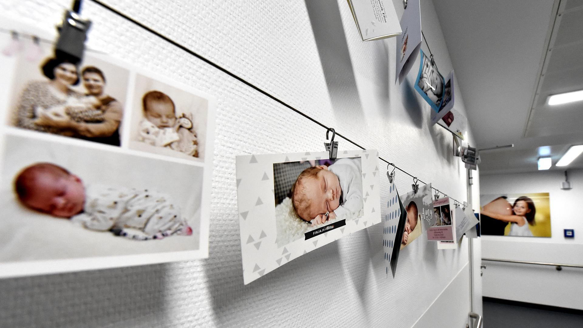 Die Bildergalerie auf der Entbindungsstation im Krankenhaus in Bruchsal.