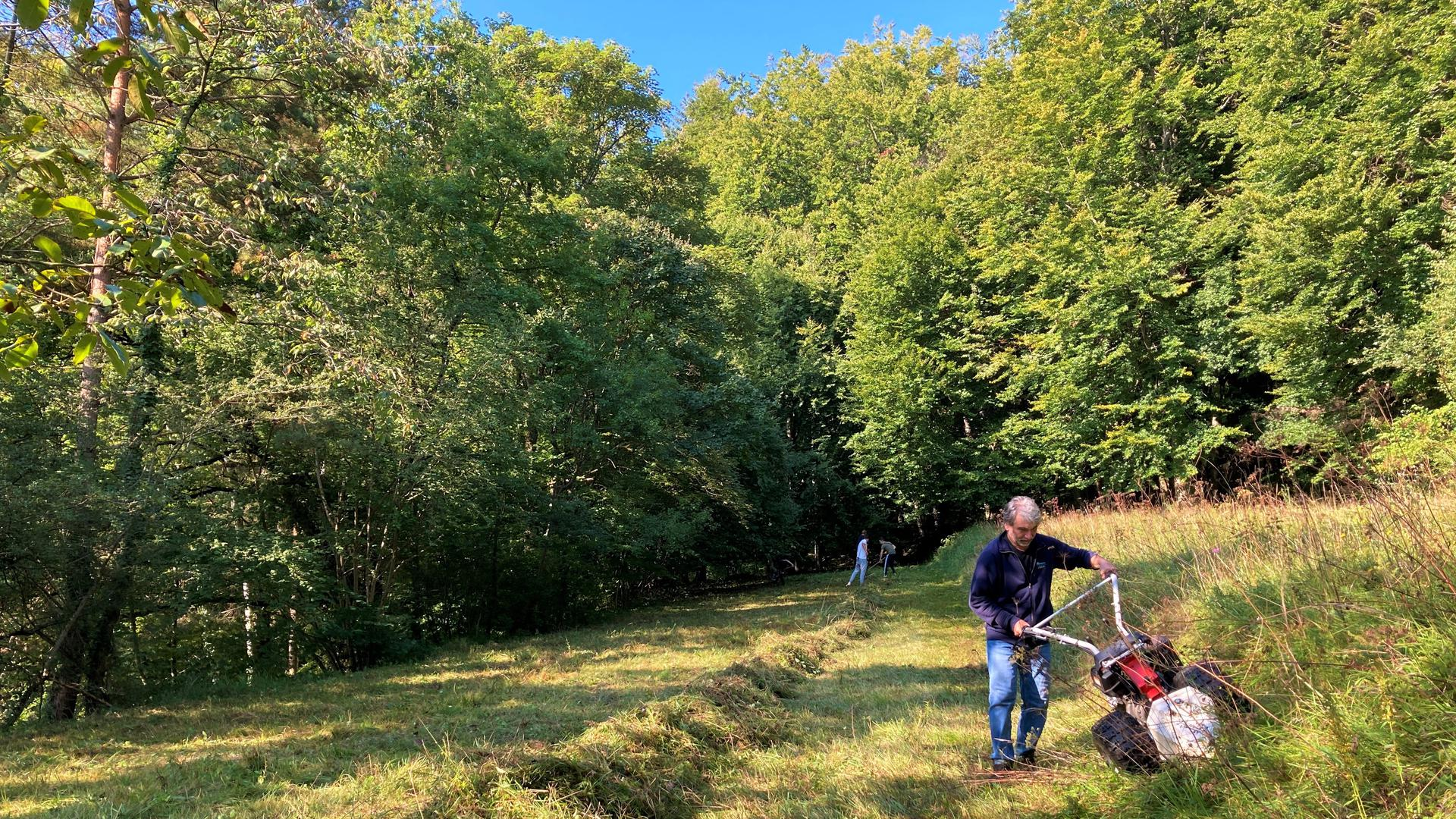 Landschaftspflege: Mit dem Balkenmäher arbeitet Thomas Adam vom Verein für Umwelt- und Naturschutz Untergrombach vor, während im Hintergrund straffällig gewordene Jugendliche und Erwachsene ihre Sozialstunden bei der Landschaftspflege abarbeiten.