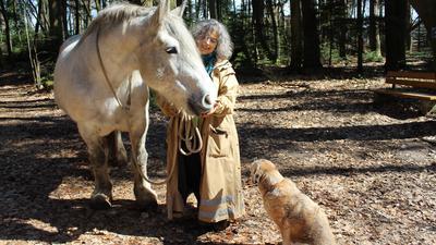 Wald, Pferd und eine Frau