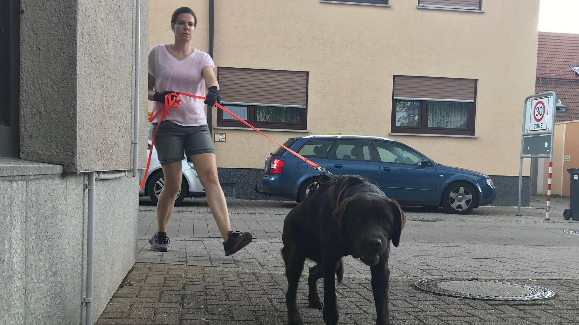 Brauner Hund mit Frau