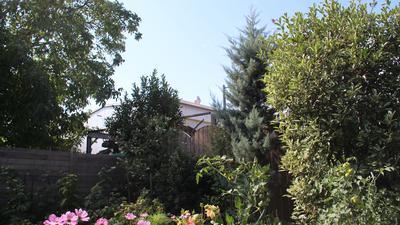 Bäume und Büsche, im Hintergrund ist das Gebäude der Firma Zolk zu sehen.