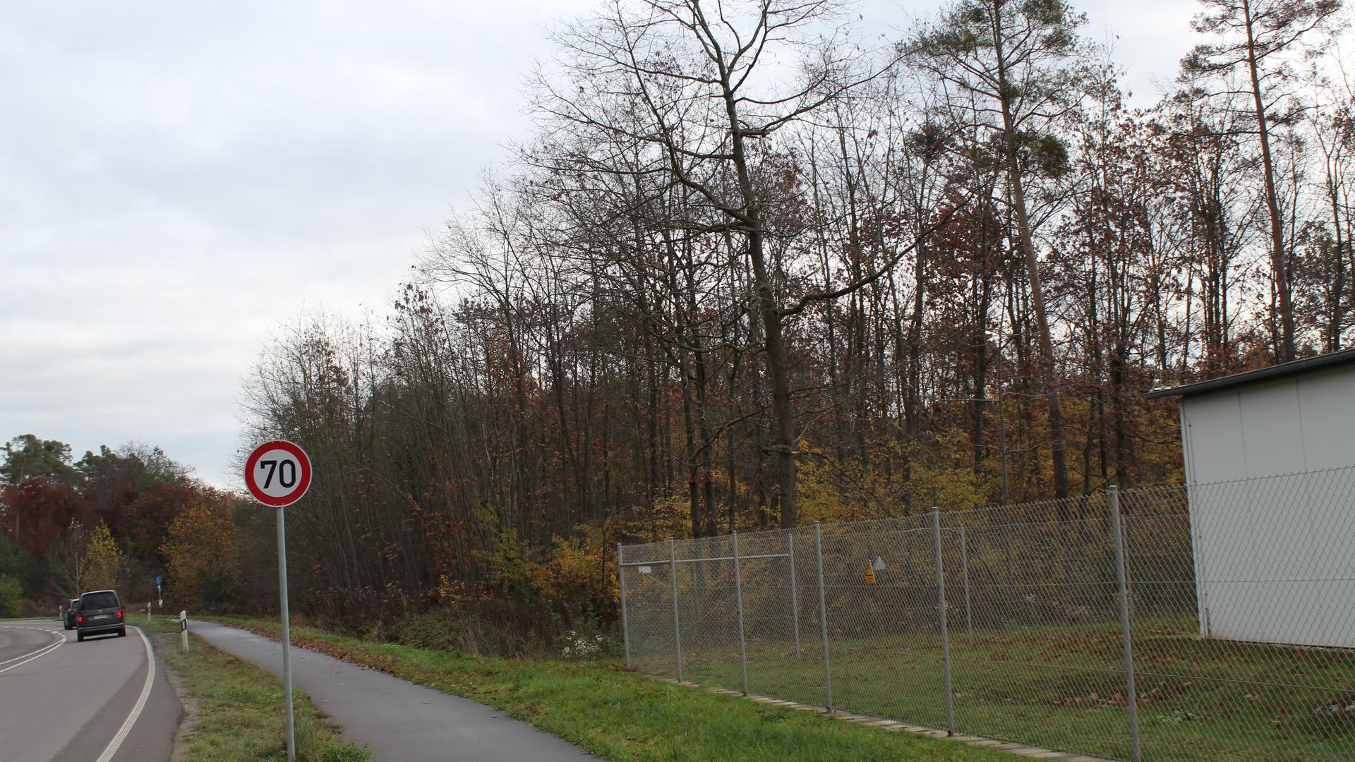 Ort des Geschehens: Am Ortsausgang von Graben-Neudorf, hinter dem Parkhaus von SEW-Eurodrive, soll eine Geothermie-Anlage in einem Waldstück entstehen. Allein die Kühl- anlage könnte bis zu 190 Meter lang werden.