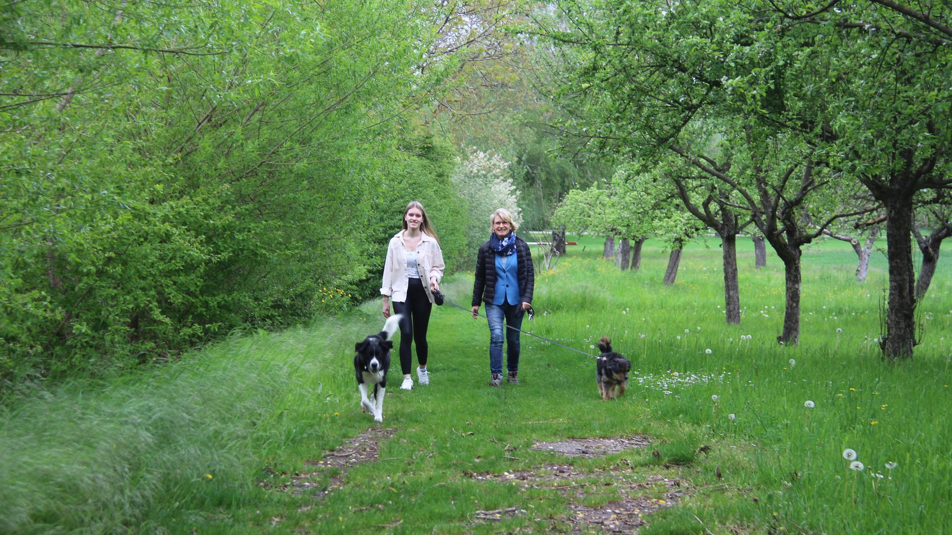 Mutter und Tochter mit zwei Hunden