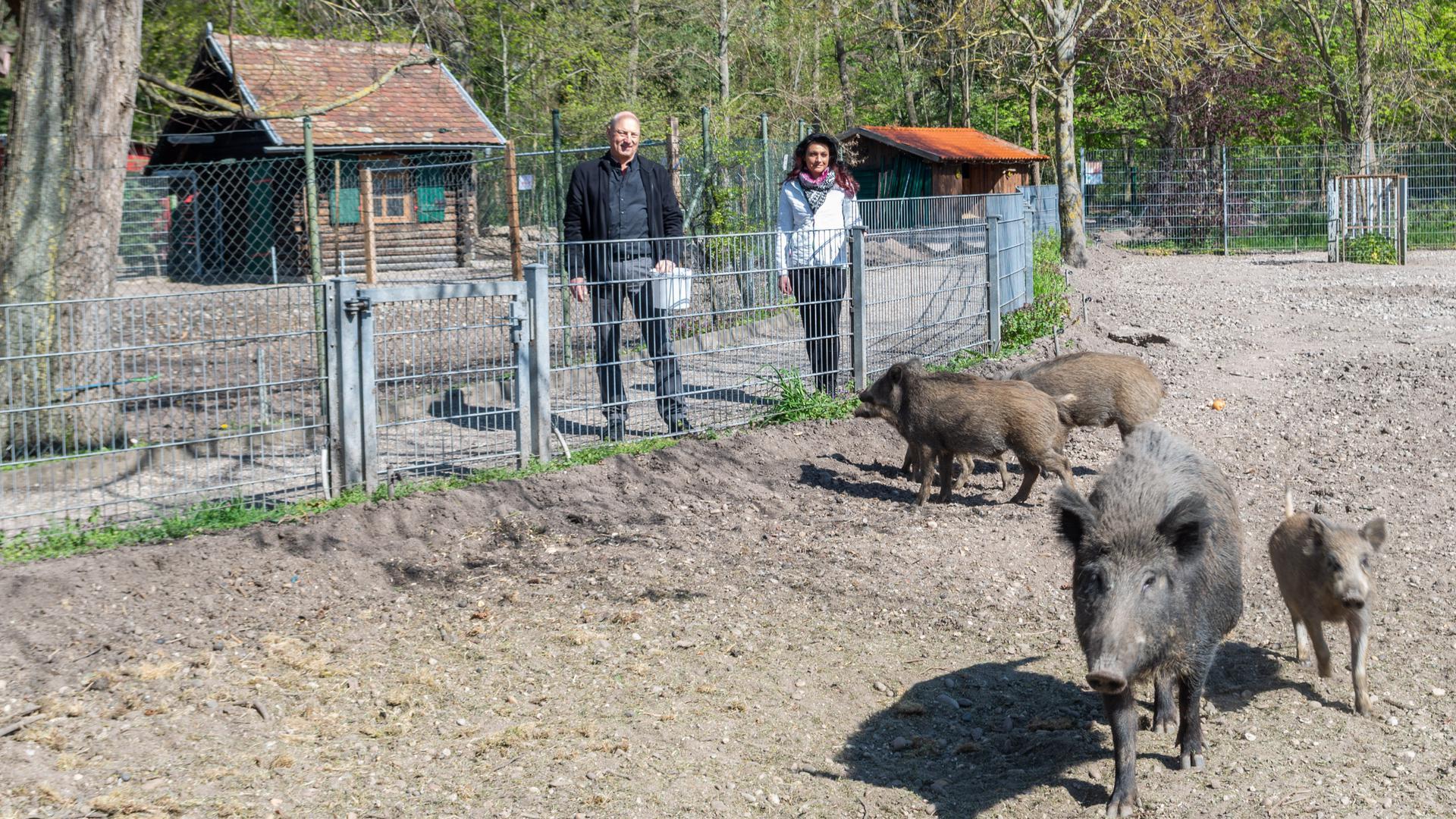 Wildschweingehege, Peter Blümle und Maria Braginez