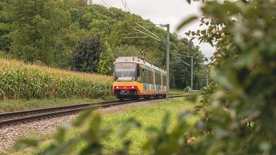 Straßenbahn im Grünen