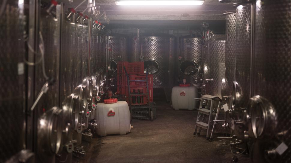 Außer Silber, innen Rot: Die Edelstahlbehälter in Zorns Lagerraum beinhalten literweise Wein, der darauf wartet, in Flaschen abgefüllt zu werden.