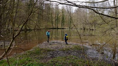 Kinder spielen am Ufer des Pfannwaldsees