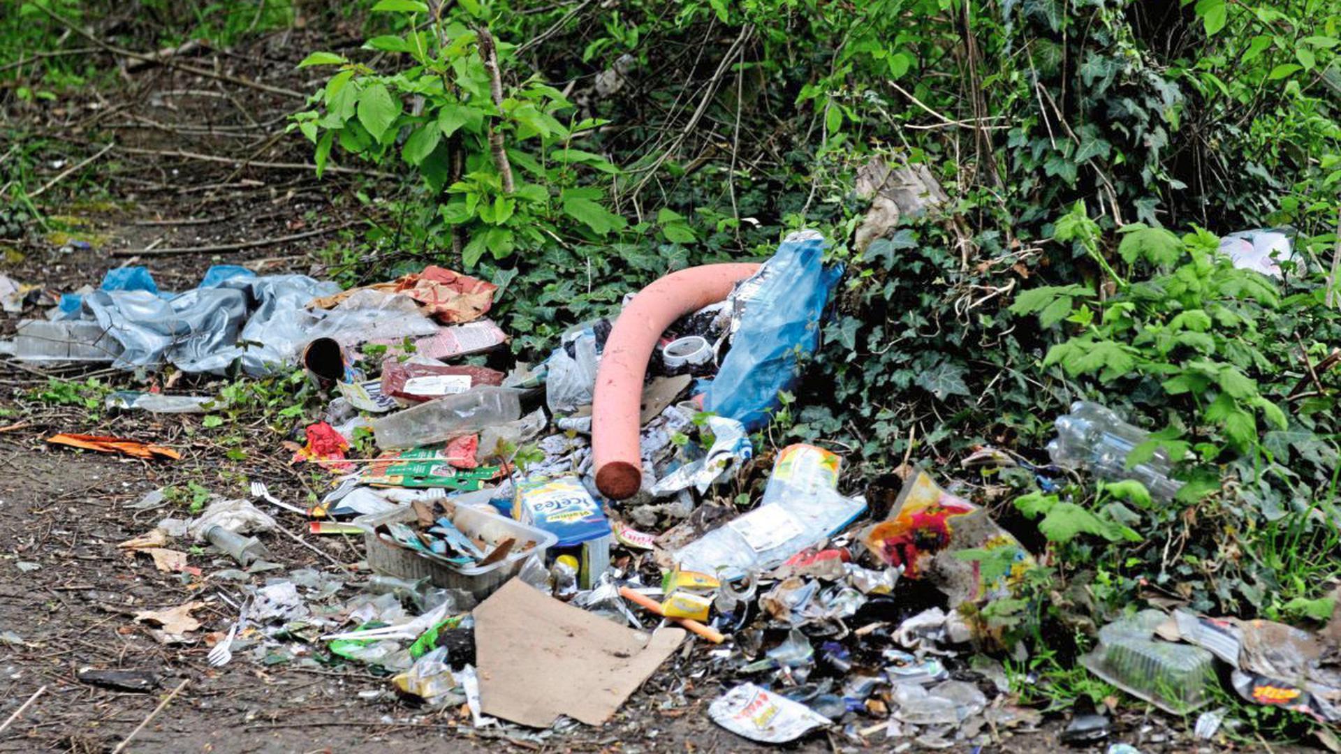 Immer mehr Menschen entsorgen ihren Müll in der Natur. Die Förster ärgert das.
