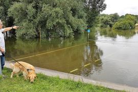 Land unter in Rheinhausen: Parkplatz und Kiosk beim Anleger der Rheinfähre sind überschwemmt.