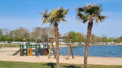 Palmen vermitteln südländisches Flair am Erlichsee
