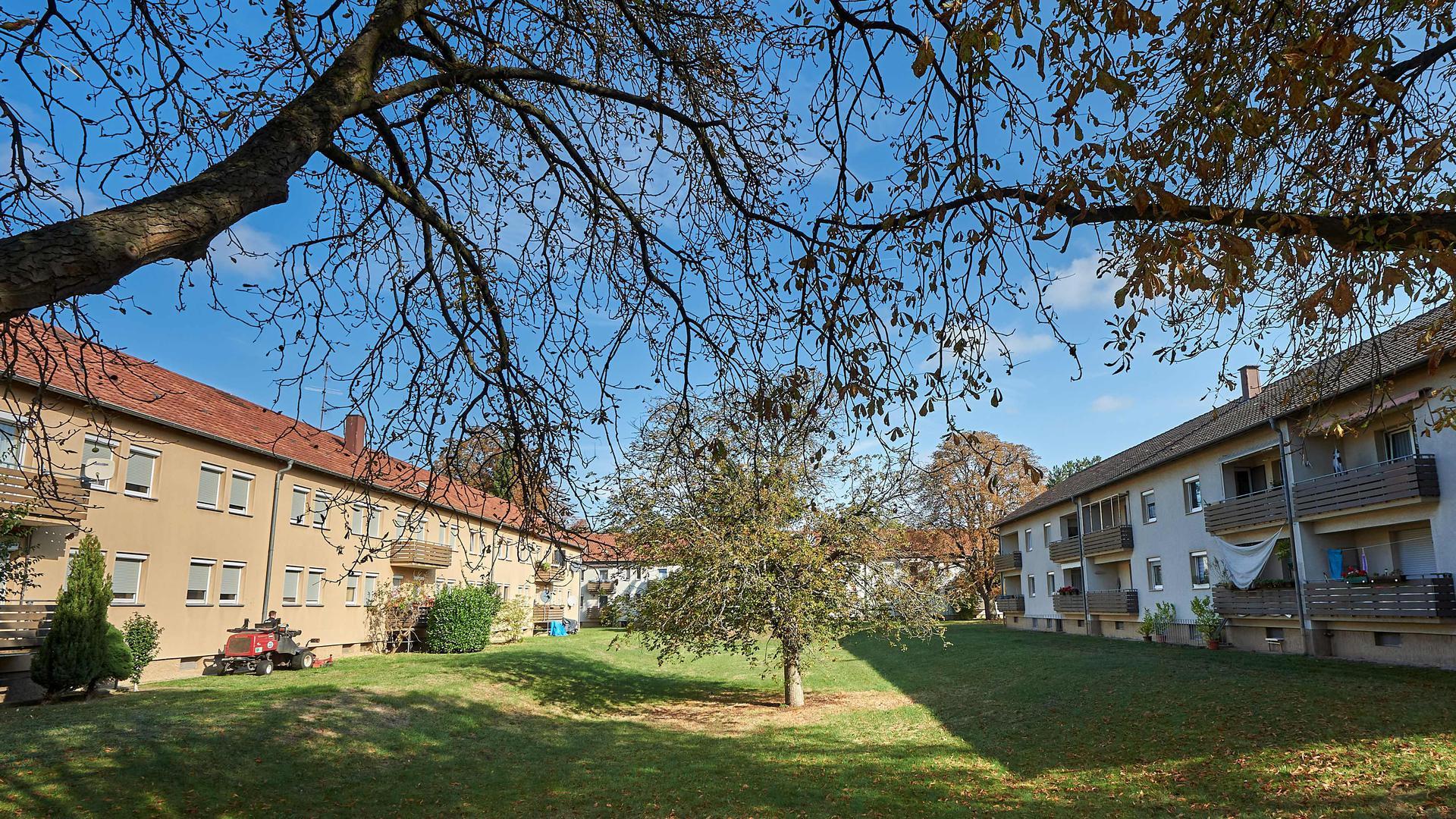 Siemenssiedlung_Weidenbusch