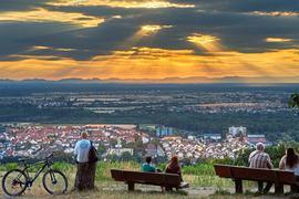 NoDas Panorama auf die Rheinebene lockt viele Menschen an.