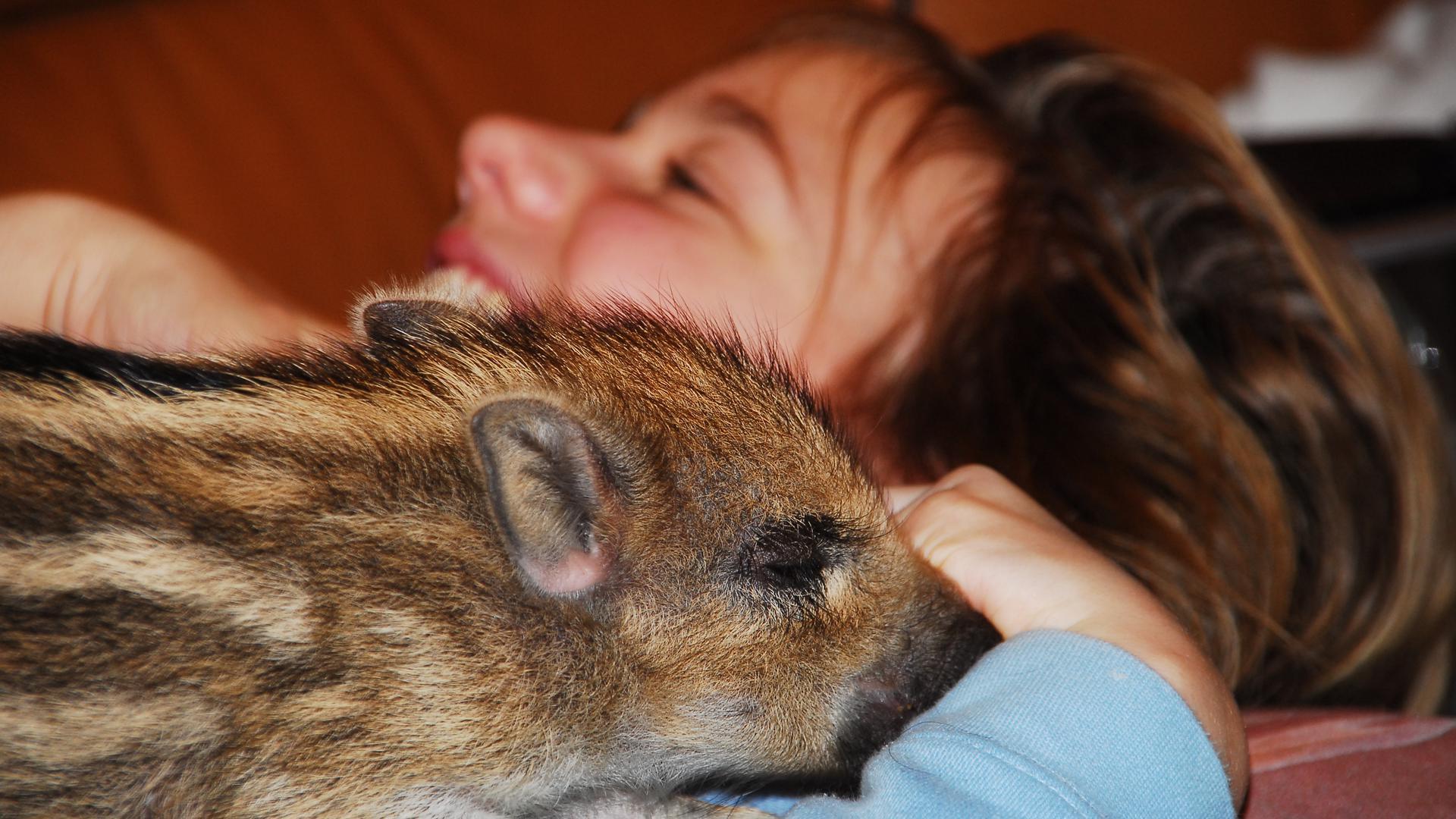 Ein Mädchen mit einem Wildschwein im Arm