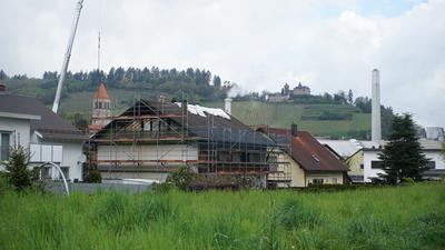 Eine Wiese mit Gebäuden im Hintergrund