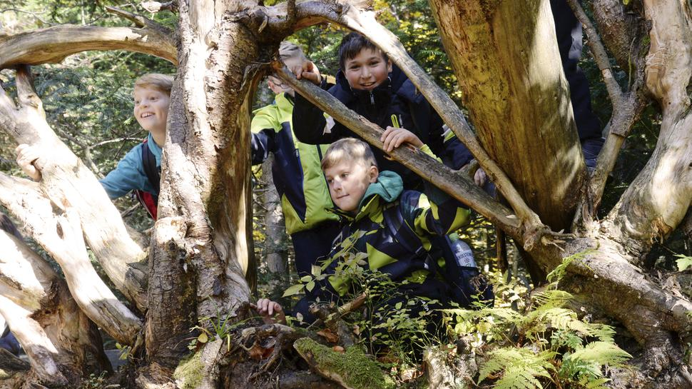 Kinder im Nationalpark Schwarzwald