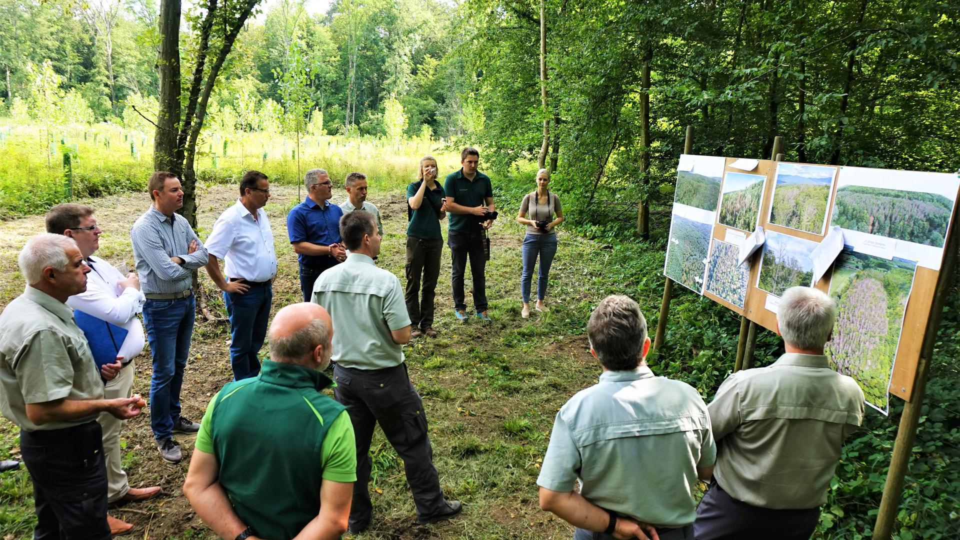 Einen Überblick über die Folgen des Klimawandels für die Wälder des Landes Baden-Württemberg verschafften sich Forstexperten in Rastatt.
