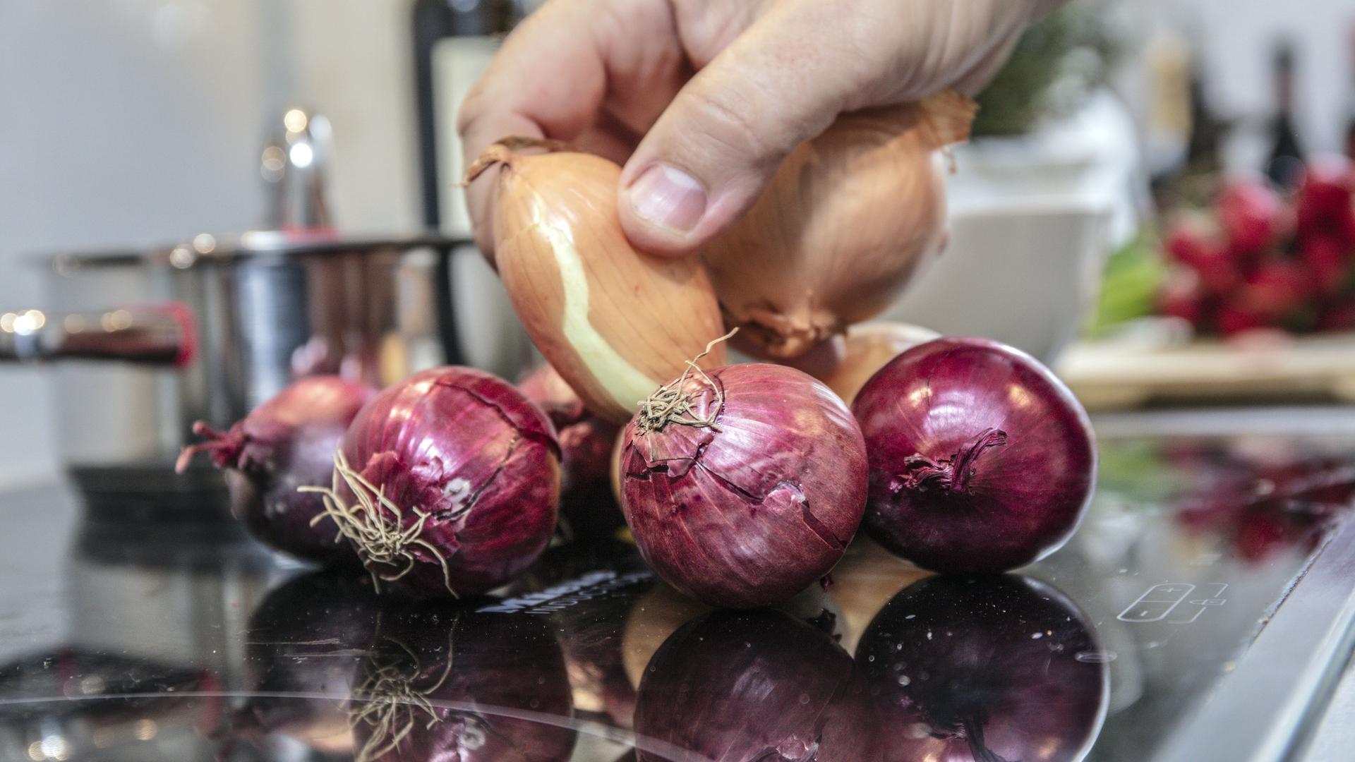 Eine Hand hält ein paar Zwiebeln.