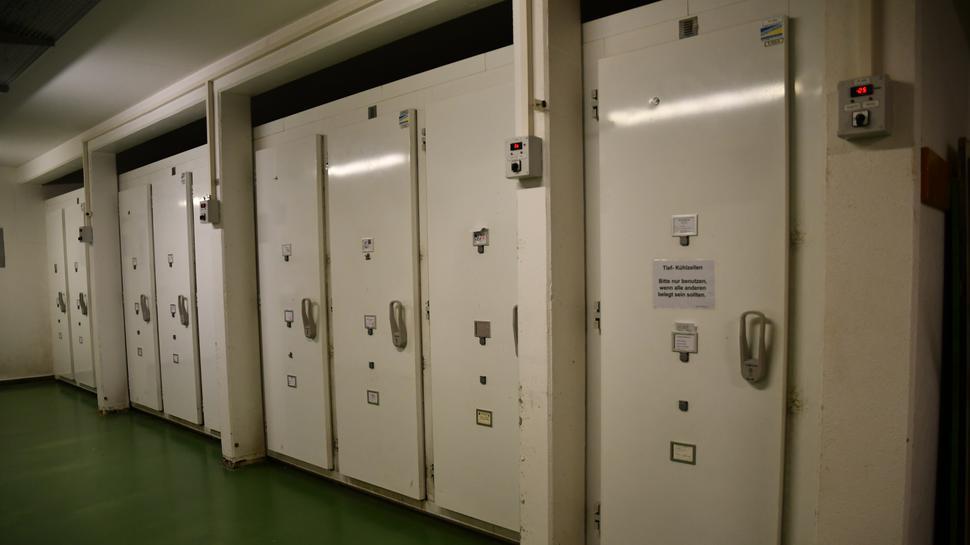 Blick in den Anlieferungsbereich des Krematoriums mit sieben Kühlzellen.