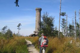 Mit Wanderungen auf die Badner Höhe - hier der Friedrichsturm, erinnert der Schwarzwaldverein am Sonntag, 23. September 2018, an den Westweg-Pionier Philipp Bussemer aus Baden-Baden.