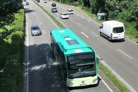 Ein Linienbus fährt auf einer Straße