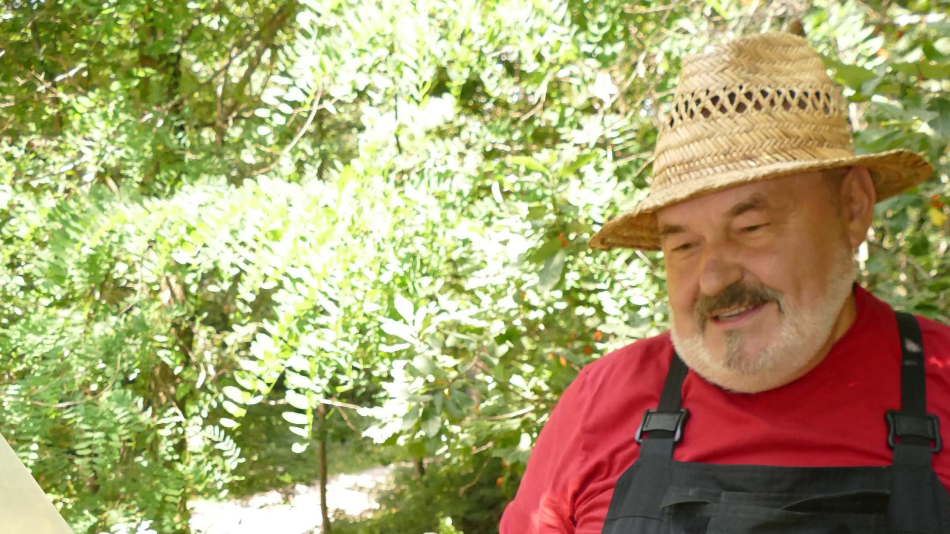 Michael Gabor zeigt das Innenleben der Klotzbeute