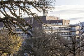 Zwischen Bäumen ist die Klinik Baden-Baden-Balg zu sehen.