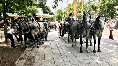 Pferdekutschen von Sabrina Möller stehen an den Kolonnaden Baden-Baden