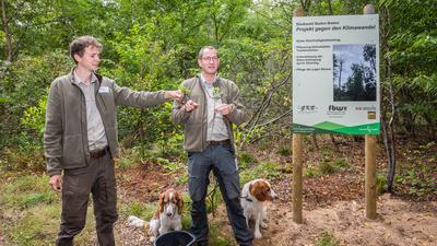 Revierförster Jannes Ammann und Forstamtchef Thomas Hauck (von links) präsentieren den Nachwuchs neben einer Infotafel zum Projekt.