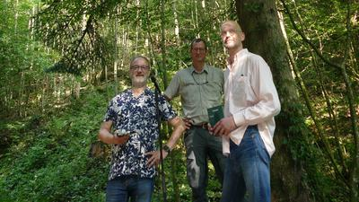 Im Stadtwald nehmen Komponist Rainer Oleak (von links), Forstamtsleiter Thomas Hauck und Regisseur Torsten Feuerstein das Tannenrauschen auf.