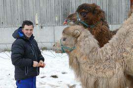 Rudolf Renz mit den Kamelen Kahn (der große Dunkle) und Attila (hellbraun)