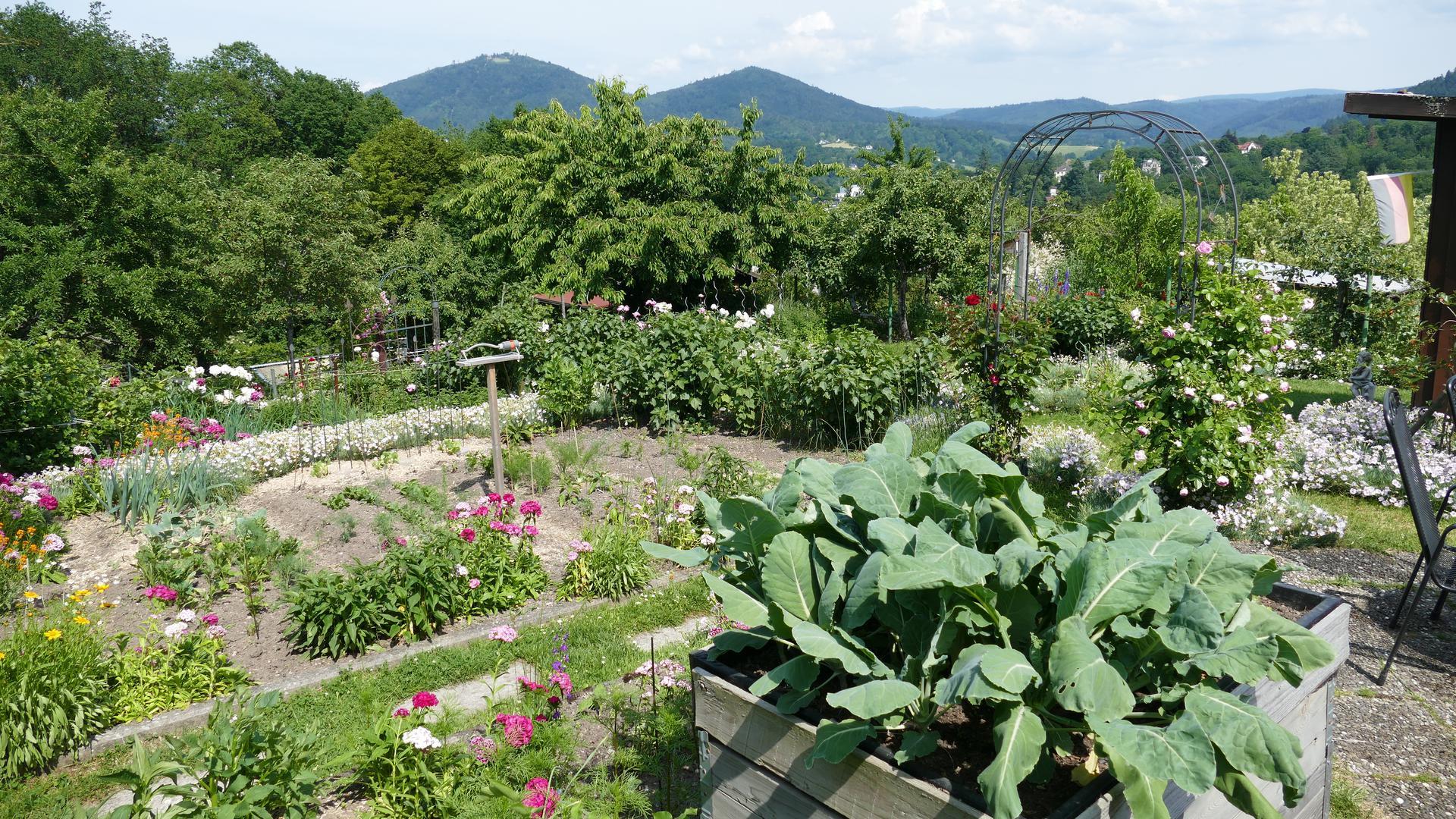In Kleingärten gilt die ein-Drittel-Regel. Das bedeutet: es müssen mindestens zu je einem Drittel Obst/Gemüse und Blumen gepflanzt werden. Das restliche Drittel kann für Gartenlauben, Rasen oder Sitzgelegenheiten genutzt werden.