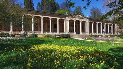 Vor der Baden-Badener Trinkhalle blühen Osterglocken und Tulpen