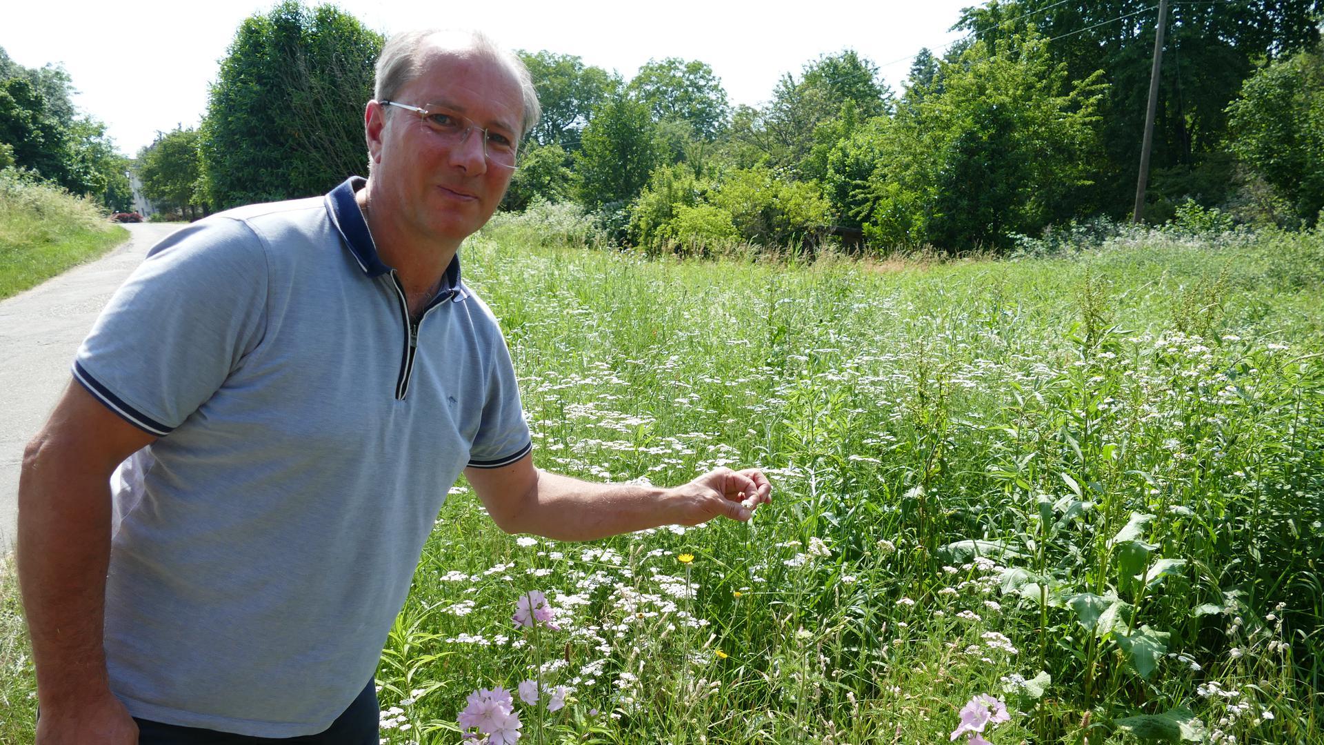 Im Obst- und Gartenbauverein und Heimat- und Kulturverein Haueneberstein fand Martin Wieland Mitstreiter für die Idee Wildblumenwiesen anzulegen.