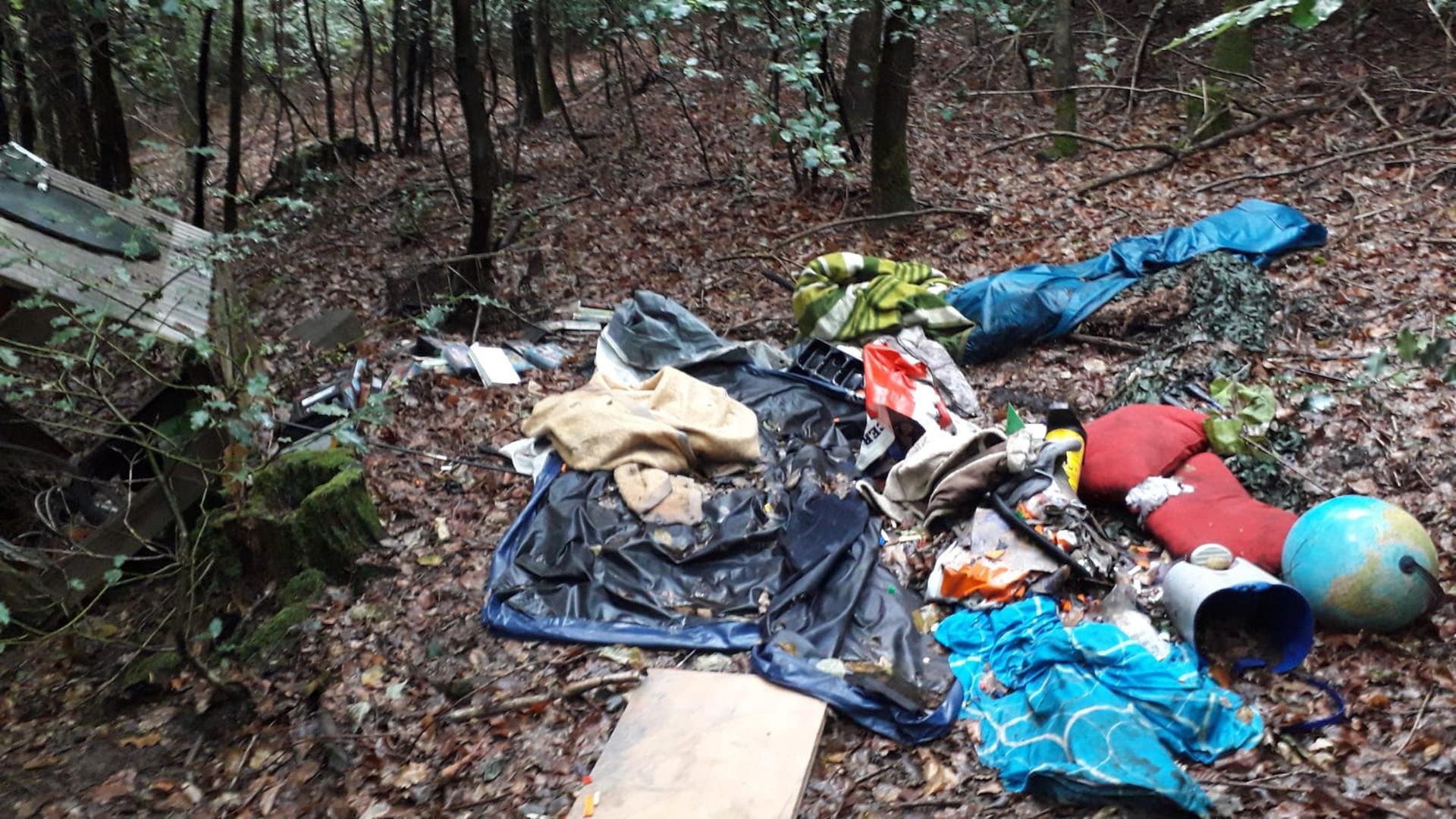 Mitten im Wald liegt wilder Müll.