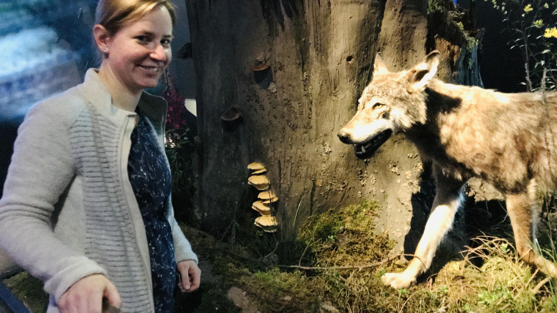 Ursula Putz, Leiterin der Besucherzentrum im Nationalpark Schwarzwald, steht in der Dauerausstellung vor einem (präparierten) Wolf.