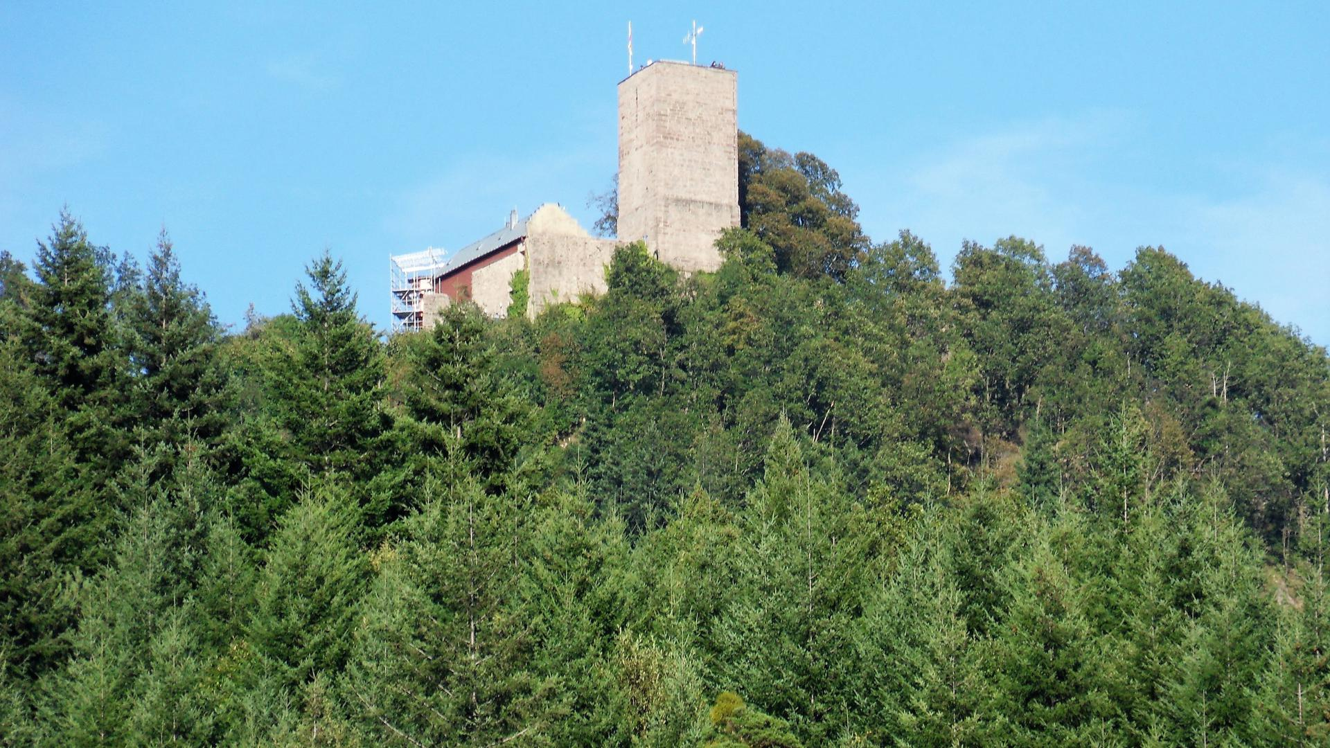 Ausflugsziel: Die Yburg thront über dem Baden-Badener Rebland. Die mittelalterliche Ruine ist das Wahrzeichen des Reblands.