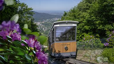 """Jeden Werktag-Morgen absolviert die Merkurbergbahn eine """"Bewegungsfahrt"""" mit einer Person."""