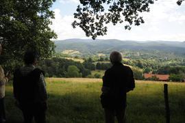 Die Erhaltung der freien Landschaft, hier am Schafberg oberhalb von Lichtental, ist ein wichtiges Anliegen. Rund 40 Pflegeverträge hat die Stadt abgeschlossen.