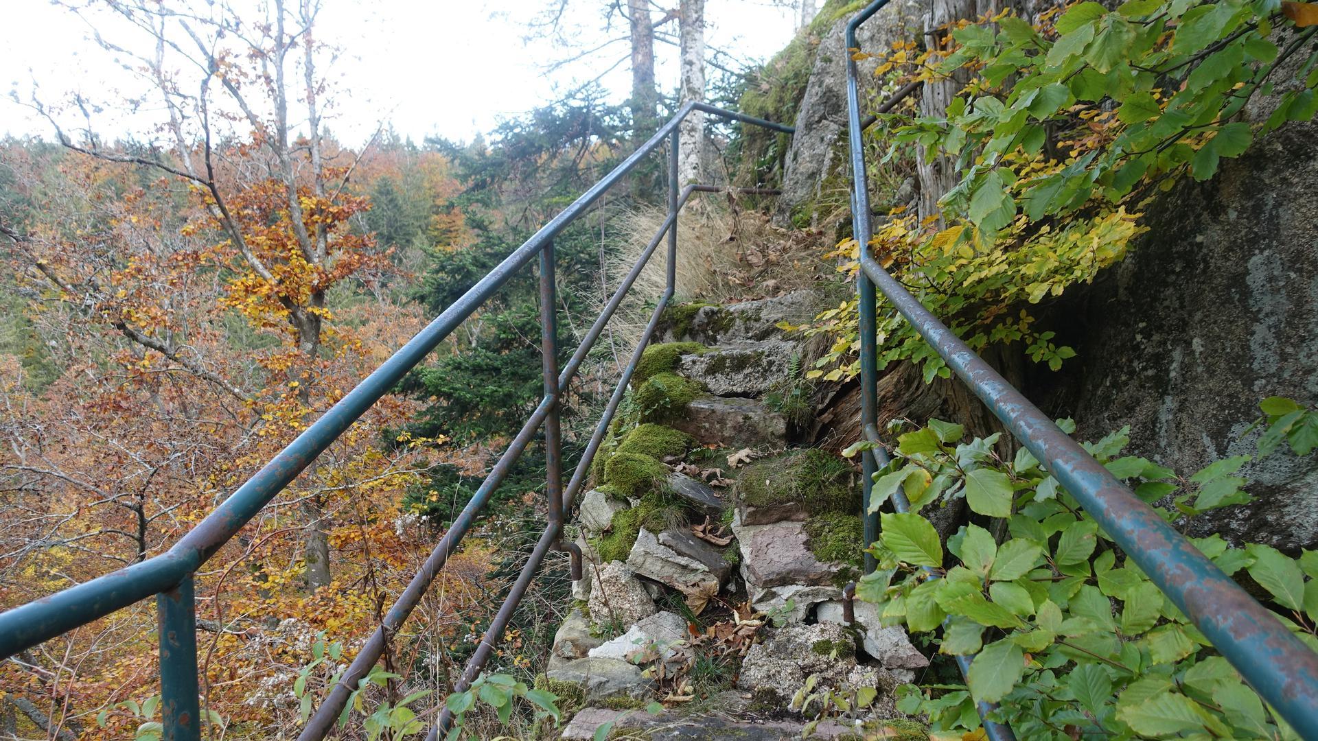 Treppe auf einen Felsen mitten im Wald.