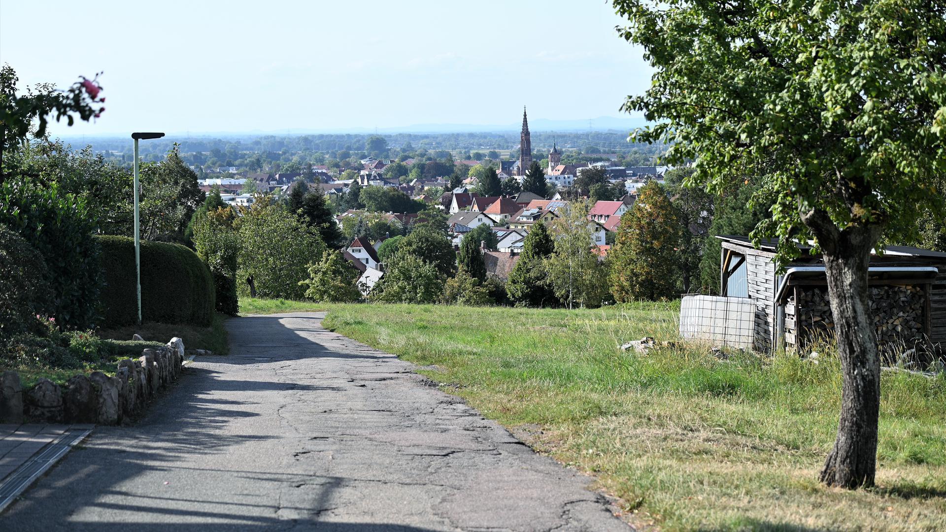 Tolle Aussicht: Der spektakuläre Blick auf Bühl entschädigt die Anwohner des Hinterfeldwegs aber nicht für die drohenden Straßenerschließungskosten. Rechts soll das Neubaugebiet entstehen.